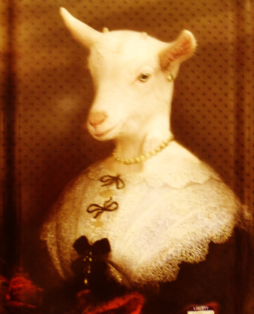 Lady Goat puts on her favourite dress to greet the Christmas guests.